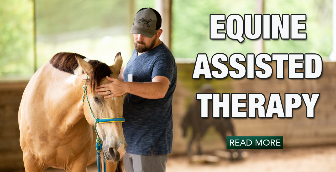 Equine-assisted therapy banner