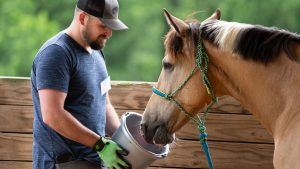 Guiding Reins - Man feeding horse